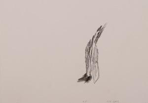 oT (WALD) Bleistift auf Papier 21 x 30 cm