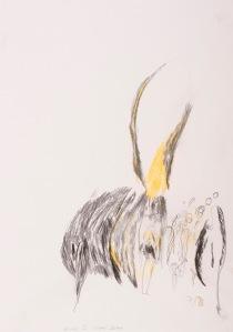 oT (WALD) Buntstift, Bleistift auf Papier 44 x 32 cm